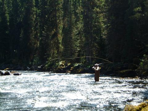 Fly Fishing Canim River